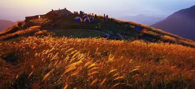 江西的好风光可远远不只庐山婺源三清山