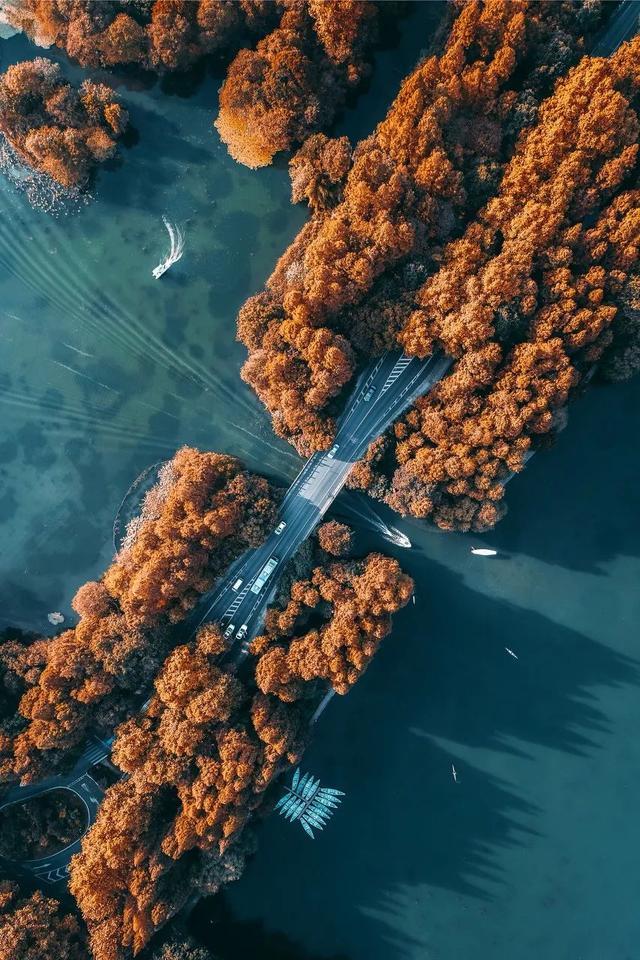 秋在这江西,无可比拟!十月给你备上,国庆赏秋清单……